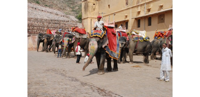 7-Nights-8-Days-Rajasthan-Tour-Packages